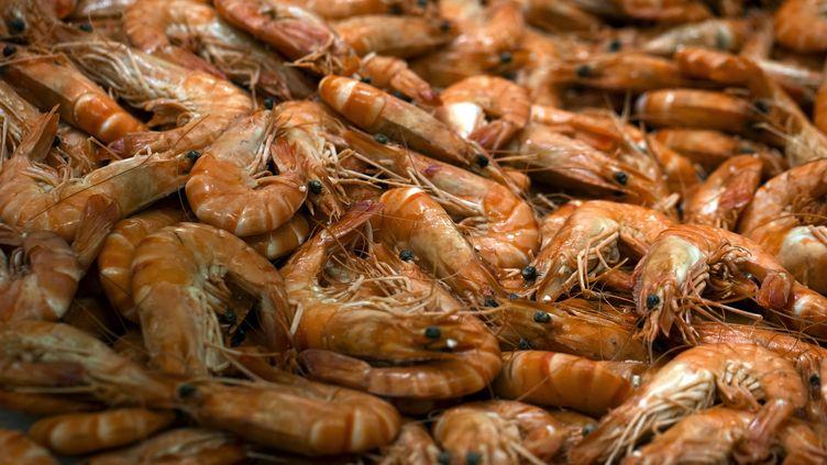 Un étal de crevettes au Kremlin-Bicêtre, le 21 décembre 2012. (JOEL SAGET / AFP)