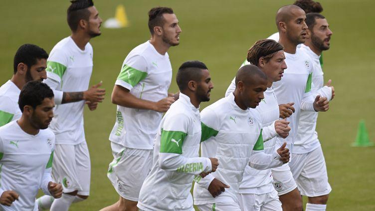 Les Algériens à l'entraînement (PHILIPPE DESMAZES / AFP)