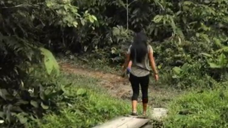 Nemo vit en Amazonie et consacre sa vie à la défense d'un morceau de la forêt amazonienne. Elle se bat contre les compagnies pétrolières qui veulent s'y installer. (FRANCE 2)