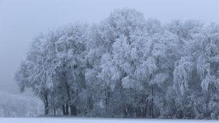 Une vague de froid extrêmement vigoureuse touche tout le continent européen.  (MAXPPP)