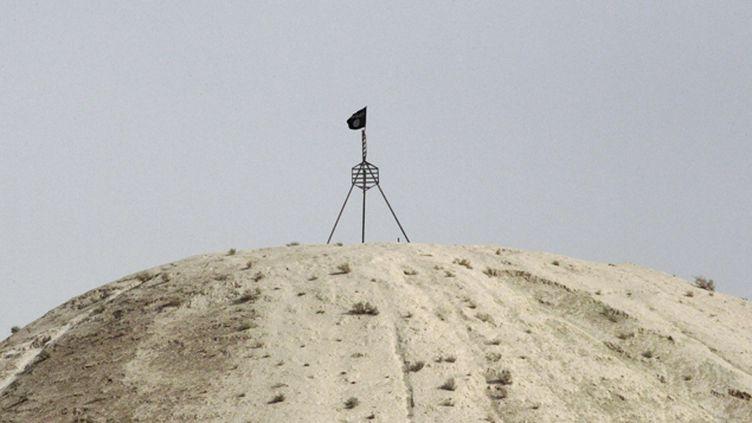 (Un drapeau de l'organisation Etat Islamique flotte sur une colline dominant la ville de Raqqa/ Reuters)
