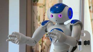 Dans une maison de retraite haut de gamme, un robot accompagne les personnes âgées pour égayer leur quotidien. (FRANCE 2)