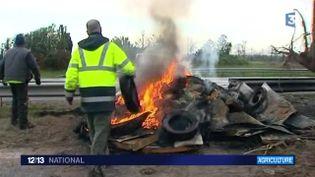 Des agriculteurs bloquent la circulation, le 28 janvier en Bretagne. (FRANCE 3)