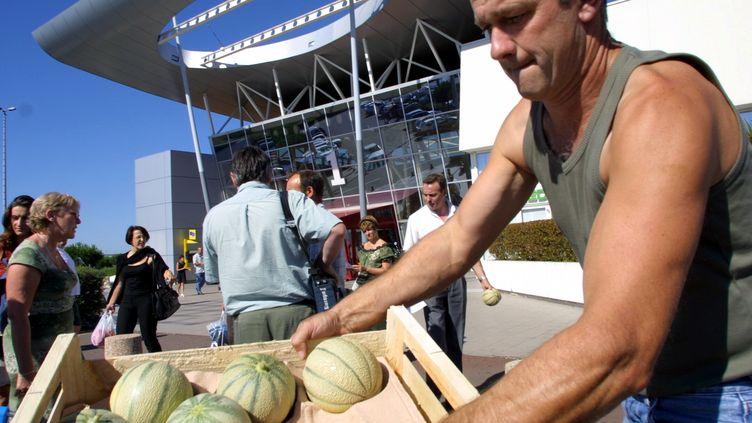 Les producteurs de melons du Quercy peinent à vendre leur production, concurrencée par les melons venus d'Espagne. (MAXPPP)