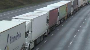 Coronavirus: le trafic des poids lourds britanniques à l'arrêt (FRANCE 2)