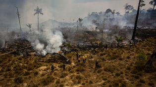 Les ravages des incendies photographiés dans la ville de Novo Progresso, dans l'état de Para, dans le Nord du Brésil, le 3 septembre 2019. (GUSTAVO BASSO / NURPHOTO / AFP)