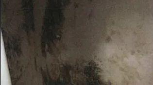 Cinq mois après l'effondrement d'immeubles rue d'Aubagne, à Marseille (Bouches-du-Rhône), un élu de la ville est accusé d'avoir loué un logement insalubre dans le 8e arrondissement de la cité phocéenne. (Capture d'écran France 3)