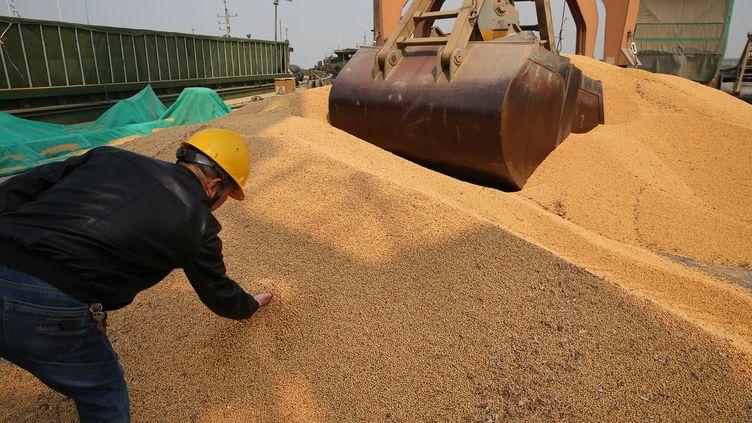 Du soja importé en Chine. (XU CONGJUN / MAXPPP)