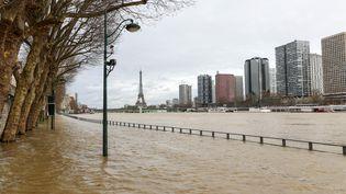 La Seine en crue à Paris, le 24 janvier 2018. (RADIO FRANCE / YANN SCHREIBER)