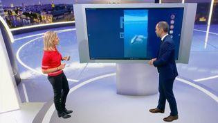 Sur une photo publiée sur les réseaux sociaux, des internautes accusent un bateau de rejeter ses déchets. En plateau, Martin Baumer revient sur cette intox. (FRANCE 2)