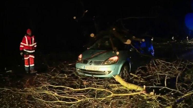 Tempête Ciara : des transports très perturbés en raison des fortes rafales de vent (FRANCE 2)
