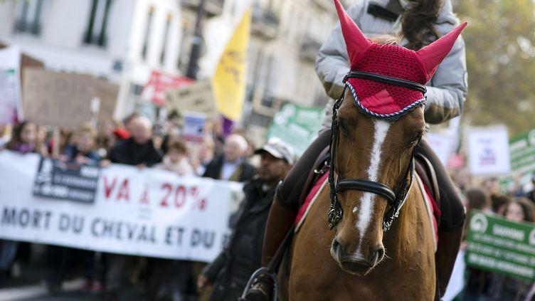 Quelques milliers de personnes accompagnées de poneys ont défilé le 11 novembre 2013 à Paris pour protester contre la hausse de la TVA à 20% dans le secteur de l'équitation. (LIONEL BONAVENTURE / AFP)