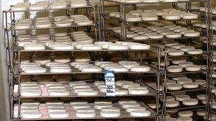 Les produits tommettes de brebis, meules de brebis, tomes de brebis, bleus de brebis et fourmes de brebisde marque Berger des Sources sont retirés de la vente, suite à la mise en évidence de la présence de salmonelles. (ALAIN JOCARD / AFP)