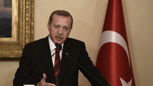 Le président turc, Recep Tayyip Erdogan, lors d'une conférence de presse, à Istanbul (Turquie), le 22 novembre 2014. (BURAK AKBULUT / ANADOLU AGENCY / AFP)