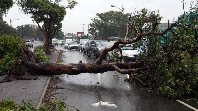 Gros embouteillagesaprès des chutes d'arbres à Durban en Afrique du Sud, le 10 octobre 2017 (ROGAN WARD / REUTERS)