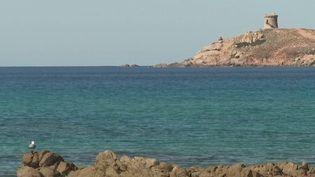 Corse : le confinement dans un paysage de carte postale (France 2)