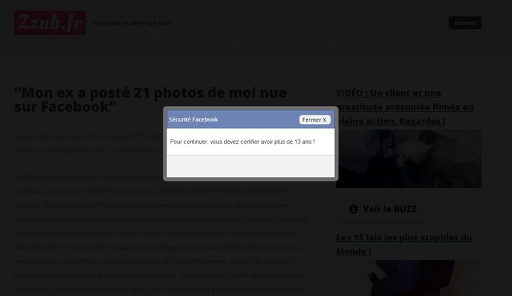 L'avertissement de zzub.fr, passage obligatoire avant d'accéder aux articles frauduleux. (VINCENT MATALON / FRANCETV INFO)