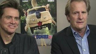 Jim Carrey et Jeff Daniels ( CAPTURE ECRAN FRANCE 2)