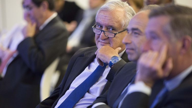 Le sénateur UMP Jean-Pierre Raffarin, le 30 mai 2013 à Paris, lors d'une convention UMP sur l'Europe. ( MAXPPP)