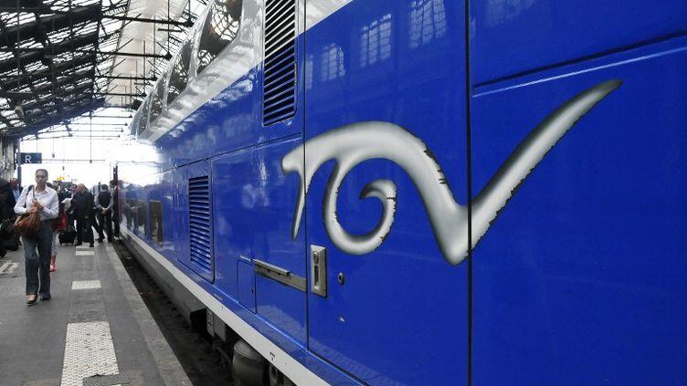 Un TGV en Gare de Lyon, le 10 juin 2014 à Paris. (YANN KORBI / CITIZENSIDE.COM / AFP)
