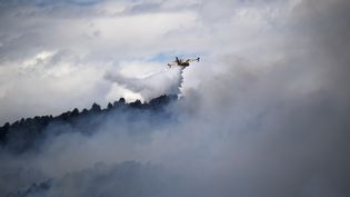 Un Canadairdans le massif du Luberon,le24 juillet 2017. (BERTRAND LANGLOIS / AFP)