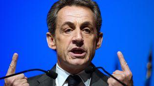 Nicolas Sarkozy en meeting de campagne à Marseille (Bouches-du-Rhône) le 5 mars 2015 (BERTRAND LANGLOIS / AFP)