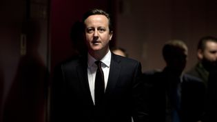 Le Premier ministre britannique, David Cameron, arrive pour une conférence de presse à la fin d'un sommet européen à Bruxelles, le 20 mars 2015. (ALAIN JOCARD / AFP)