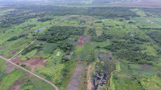 Vue aérienne de l'ancien site Aguada Fénix, au Mexique, le 3 juin 2020. (REUTERS)