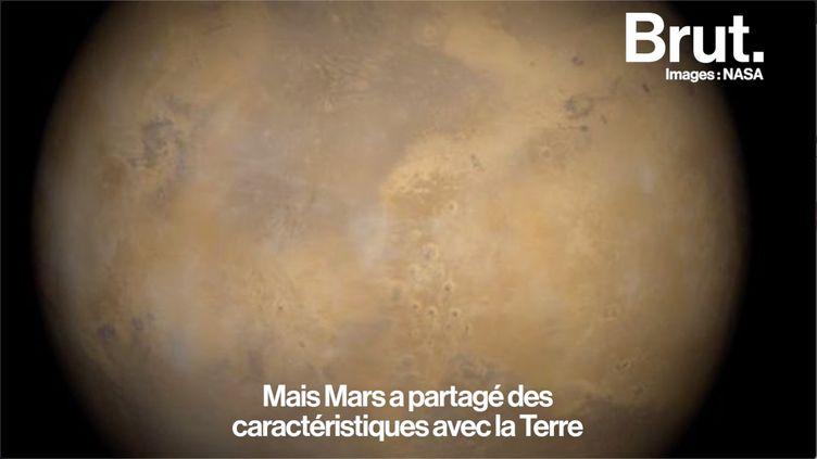 VIDEO. 9 questions très simples sur la conquête de Mars (BRUT)