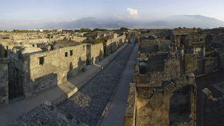 Le temps s'est arrêté à Pompéi dont subsistent les rues et les murs des maisons. Comme après un bombardement...  (Soprintentendenza Speciale per i Beni Archeologici di Napoli e Pompei / Trustees of the British Museum)