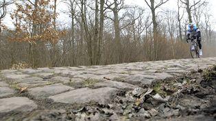Un coureur d'Omega Pharma - Quick Step sur les pavés de la course Paris-Roubaix en 2013. (PASCAL ROSSIGNOL / REUTERS)