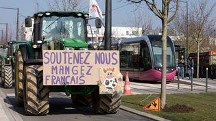 Manifestation des agriculteurscontre l'accord Union européenne-Mercosur, à Dijon (Côte d'Or) en février 2018. (JC TARDIVON / MAXPPP)