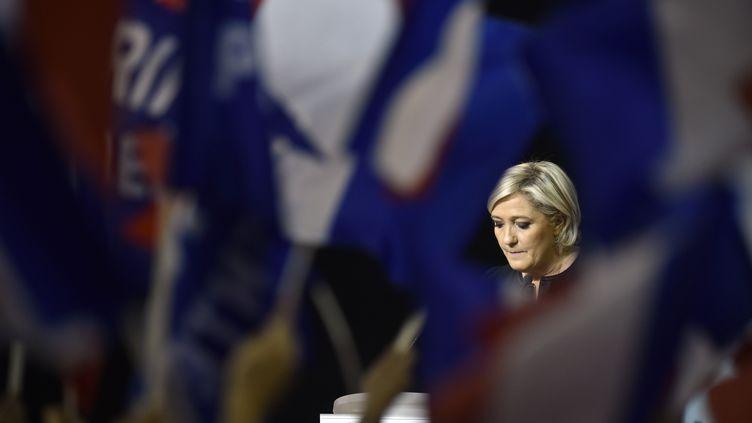 Marine Le Pen, lors d'un meeting, le 15 avril 2017, à Perpignan (Pyrénées-Orientales). (ALAIN JOCARD / AFP)