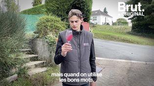 VIDEO. Le quotidien d'Émile, jeune vigneron en Touraine (BRUT)