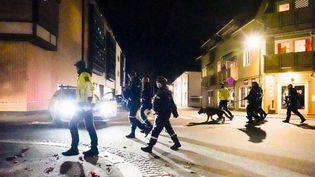 Mercredi 13 octobre, en soirée, dans la petite ville de Kongsberg, en Norvège, un homme de 37 ans a tué cinq personnes avec un arc et des flèches. Il était soupçonné de radicalisation. (CAPTURE D'ÉCRAN FRANCE 3)