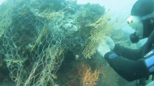 Palana Environnement a eu l'idée de débarrasser les fonds marins des filets coincés abandonnés. (CAPTURE ECRAN FRANCE 2)