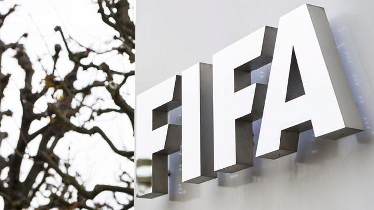 (Fifa : Michel Platini et Sepp Blatter suspendus huit ans de toute activité liée au foot © MaxPPP)