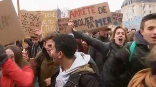 À Bruxelles en Belgique, on se mobilise pour le climat dimanche 27 janvier. (FRANCE 2)