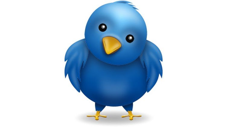 (L'oiseau bleu, emblème de Twitter)