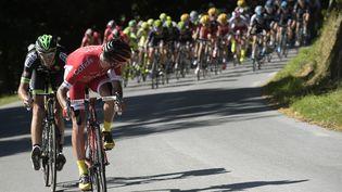 Les coureurs du Tour de France lors de l'étape Livarot-Fougères, samedi 10 juillet 2015. (LIONEL BONAVENTURE / AFP)