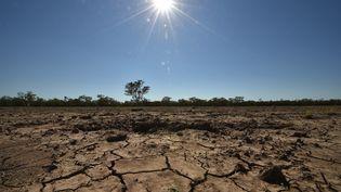 L'Australie a été touchée par l'une des plus sévères sécheresses depuis un siècle. La terre de la ville agricole de Walgett craque sous la chaleur de ce 11 février 2015. (PETER PARKS / AFP)