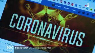 Covid-19: épidémie de fausses nouvelles sur les réseaux sociaux (FRANCE 2)