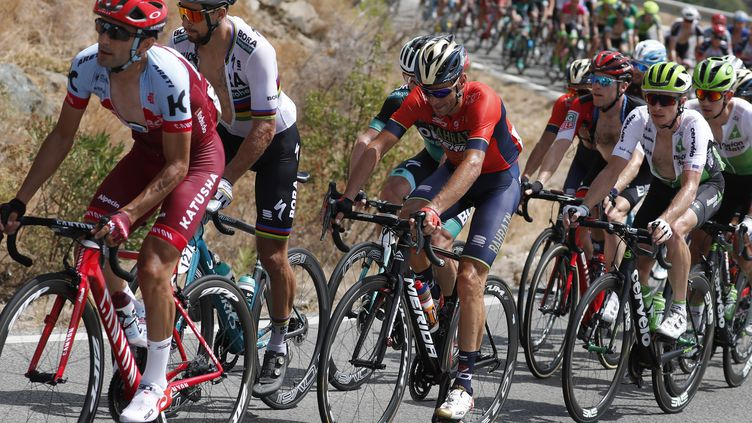 Vincenzo Nibali sur la 3e étape de la Vuelta 2018 (LUIS ANGEL GOMEZ / BETTINIPHOTO)