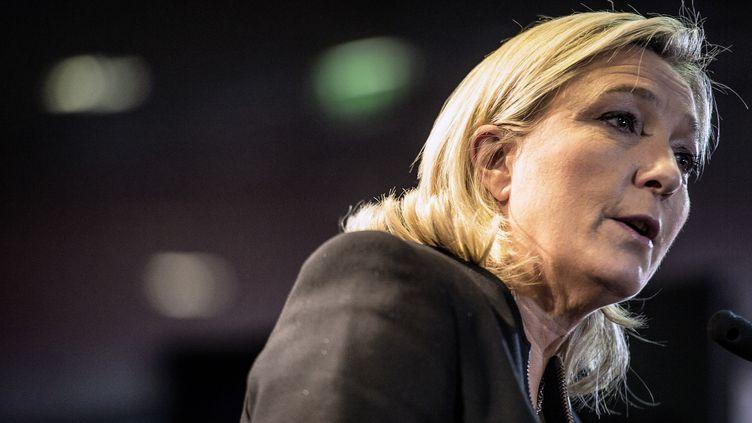 La présidente du Front national, Marine Le Pen, au congrès du parti à Lyon (Rhône), le 29 novembre 2014. (JEFF PACHOUD / AFP)