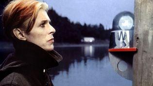 """David Bowie dans le film """"L'homme qui venait d'ailleurs"""", qui a inspiré la comédie musicale """"Lazarus"""".  (British Lion Film Corporation/Collection ChristopheL/AFP)"""