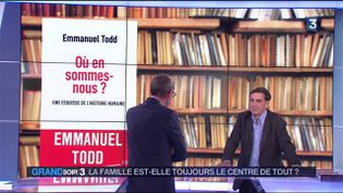 Emmanuel Todd (France 3)
