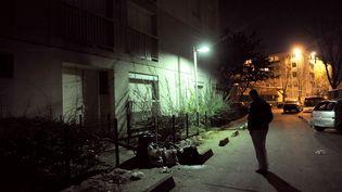 En décembre 2011 à Saint-Denis (Seine-Saint-Denis), dans un quartier infesté de rats. (MEHDI FEDOUACH / AFP)