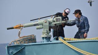Des pêcheurs japonais préparent leur harpon avant de partir en mer, àIshinomaki (Japon), le 26 avril 2014. (KAZUHIRO NOGI / AFP)