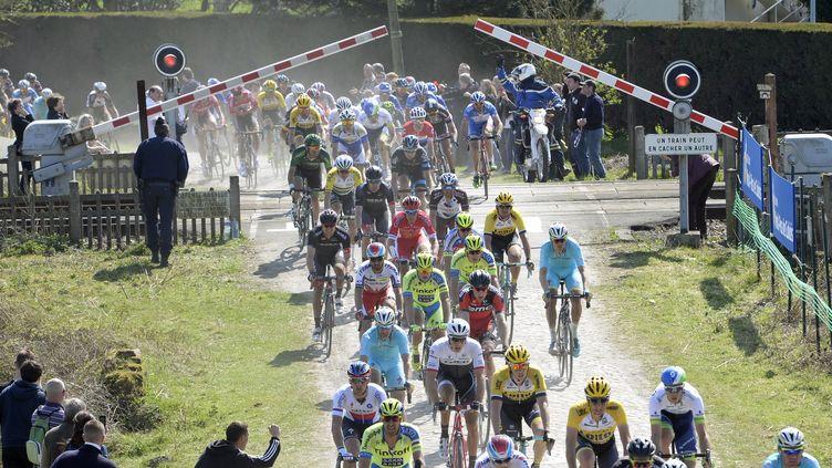 Un passage à niveaux a perturbé la 113e édition de Paris-Roubaix (DIRK WAEM / BELGA MAG)