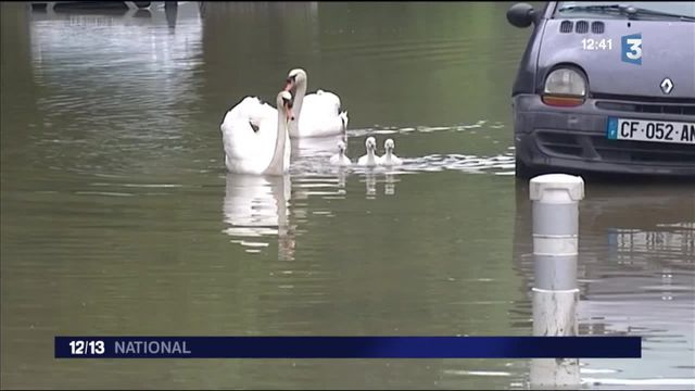 Inondations : en Essonne, les sinistrés craignent les pillages